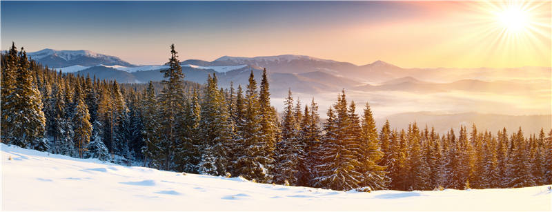 Sunrise Vinyl Photo Background Photography Winter Snow Wallpaper Children Backdrops Props Trees 9x5ft win1319